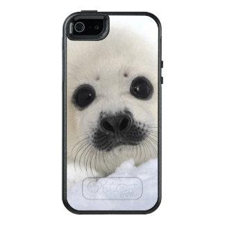 Foca de Groenlandia del bebé Funda Otterbox Para iPhone 5/5s/SE