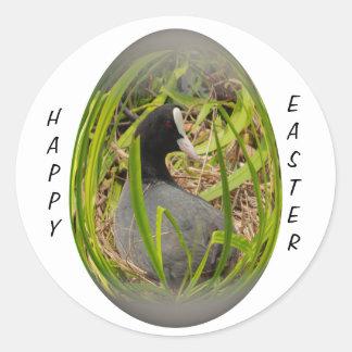 focha del huevo de Pascua en su jerarquía Etiqueta Redonda