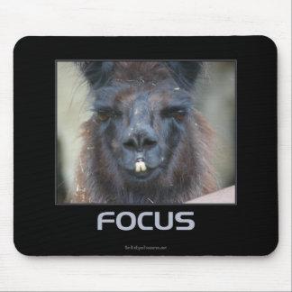 Focus Black Llama Inspirational Mouse Pad