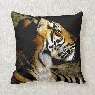 Focus_ Pillows