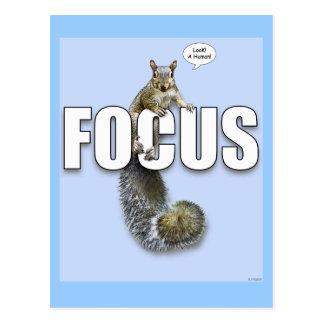 Focus Post Cards