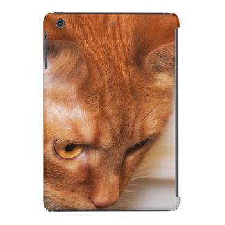 Focused Humane Society cat iPad Mini Case