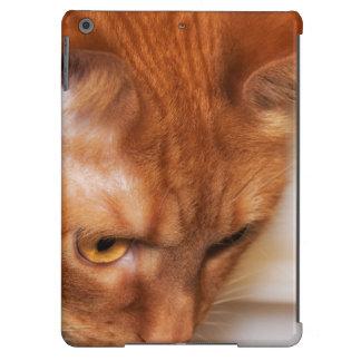 Focused Humane Society cat iPad Air Cover