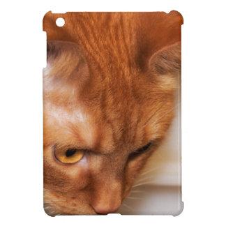 Focused Humane Society cat iPad Mini Covers