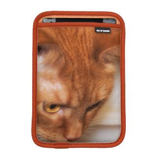 Focused Humane Society cat iPad Mini Sleeve