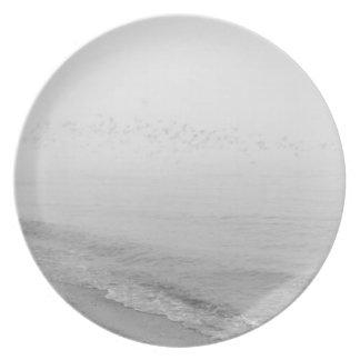 Fog and rain setting in along the shoreline plates