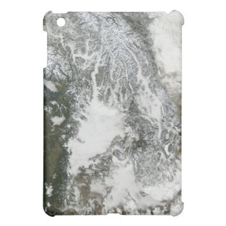 Fog and snow in the Pacific Northwest (true col iPad Mini Cases