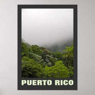 Fog and Tropical Trees El Yunque Puerto Rico Poster