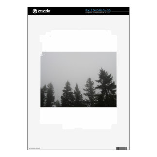 Fog anf Fir Trees - Photograph Decal For The iPad 2