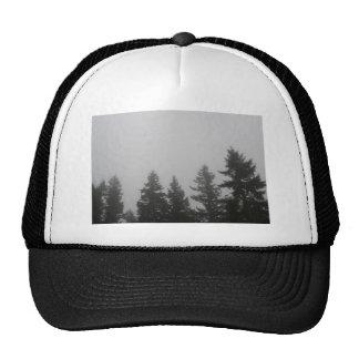Fog anf Fir Trees - Photograph Trucker Hat