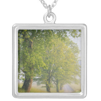 Fog covered road, Cades Cove, Great Smoky Silver Plated Necklace