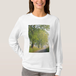 Fog covered road, Cades Cove, Great Smoky T-Shirt