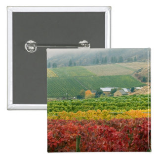 Fog creeps over Gehring Brothers Winery nestled 2 Inch Square Button