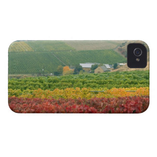Fog creeps over Gehring Brothers Winery nestled Case-Mate iPhone 4 Case