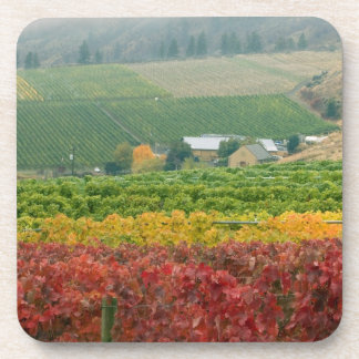 Fog creeps over Gehring Brothers Winery nestled Drink Coaster