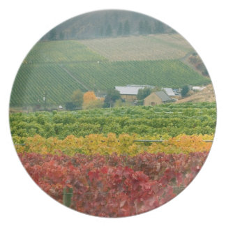 Fog creeps over Gehring Brothers Winery nestled Party Plates