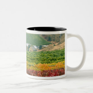 Fog creeps over Gehring Brothers Winery nestled Two-Tone Coffee Mug
