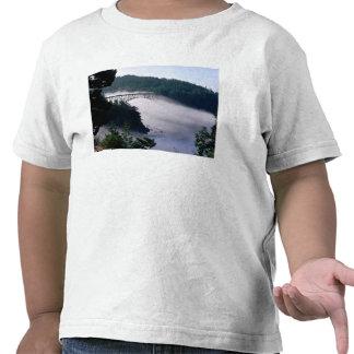Fog drifts under the Deception Pass bridge at Tee Shirt