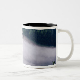 Fog drifts under the Deception Pass bridge at Two-Tone Coffee Mug