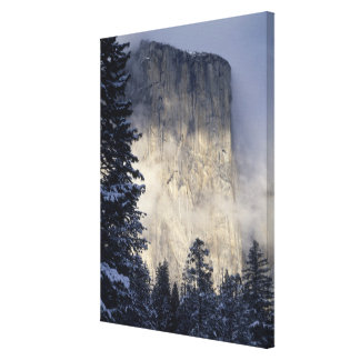 Fog Enveloping Mountain Canvas Print