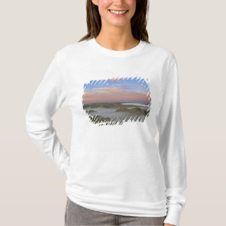 Fog from the Little Missouri River hangs in the T-Shirt
