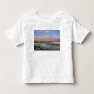 Fog from the Little Missouri River hangs in the Toddler T-shirt