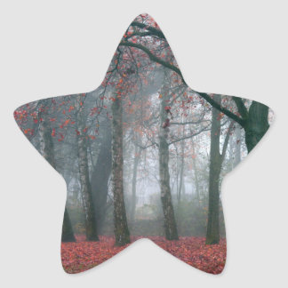 Fog in Autumn Forest with Red Leaves Sticker