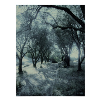 Fog of Dawn Poster