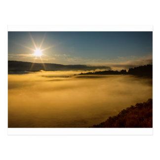 Fog On Yellowstone Lake Postcard