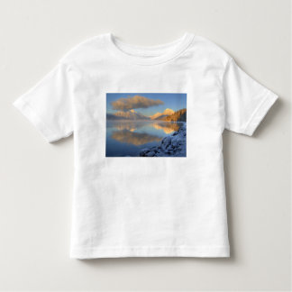 Fog rises from Lake McDonald on a very cold Toddler T-shirt