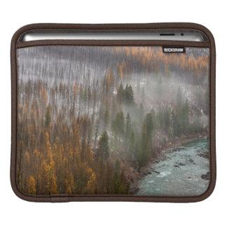 Fog Rolls In On Autumn Larch Trees iPad Sleeves