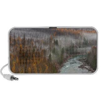 Fog Rolls In On Autumn Larch Trees iPhone Speaker