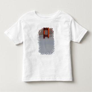 Fog rolls through the San Francisco bay covering 2 Toddler T-shirt