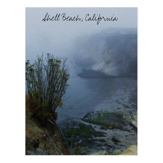 Fog @ Shell Beach Postcard