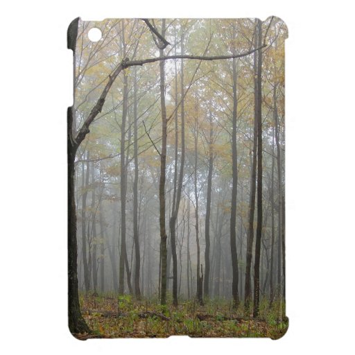 Fog Through the Trees Case For The iPad Mini