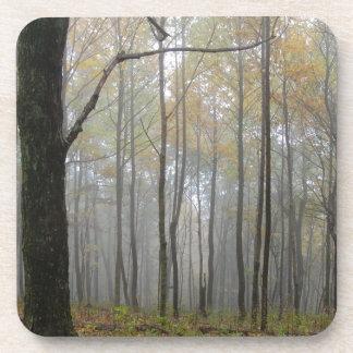 Fog Through the Trees Coaster