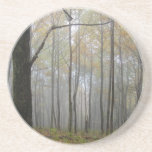 Fog Through the Trees Drink Coasters