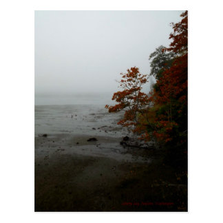 Foggy Autumn Morning Post Cards