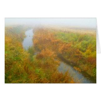 Foggy creek card