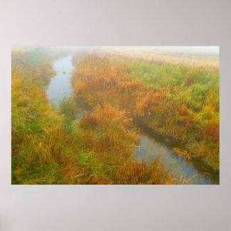 Foggy creek poster