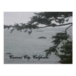 Foggy Day in Crescent City Postcards