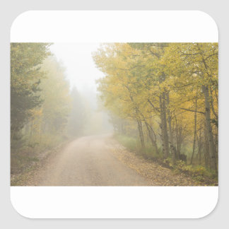 Foggy Dirt Road In The Autumn Season Square Sticker