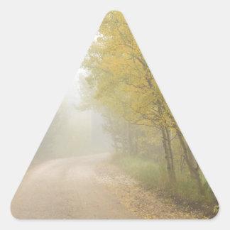 Foggy Dirt Road In The Autumn Season Triangle Sticker