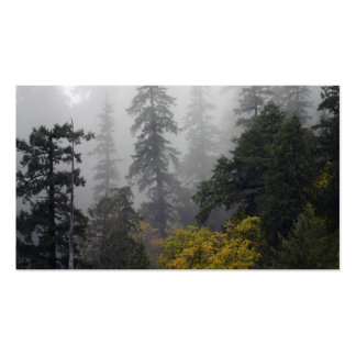 Foggy Elk River Old Growth Forest Office Suite Business Card