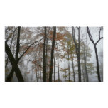Foggy Fall in Pennsylvania Poster