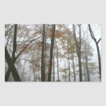 Foggy Fall in Pennsylvania Rectangular Sticker