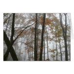 Foggy Fall Nature Card (Blank Inside)