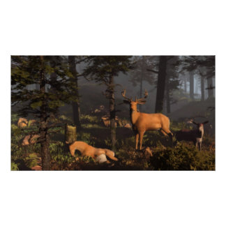 Foggy-Forest-Morn Poster