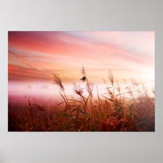 Foggy Landscape.Early Morning Mist. Poster