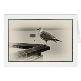 Foggy Morning Stationery Note Card